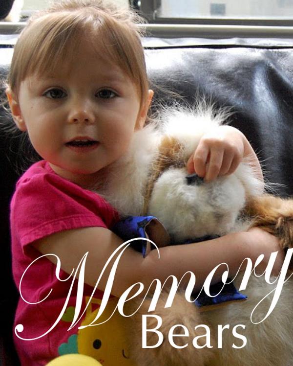 Memory bears boxb