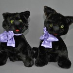 SA HansonJ2cats