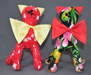 SA crazycats2