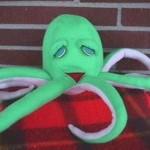 SA octopus